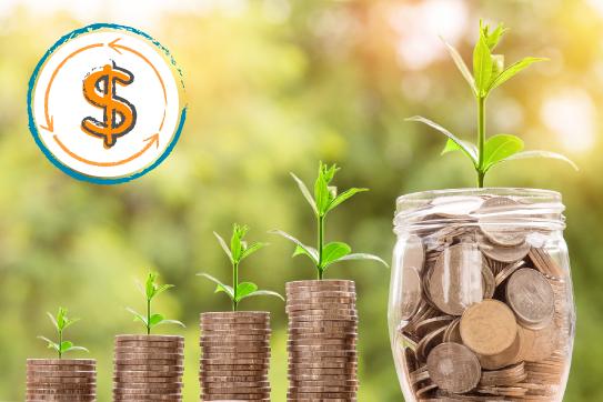 Economía circular ysostenibilidad